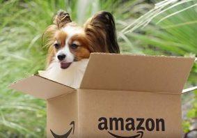 Amazon-Dogs-3